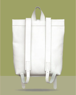 big-rollitbag-white-back